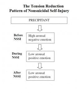 Bowe. Erin. NSSI pure tension reduction model